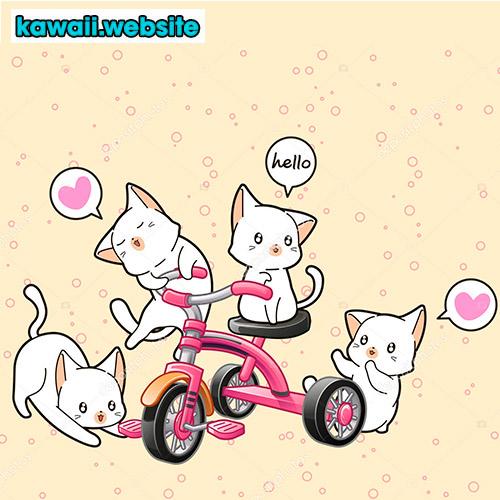 imagen-de-gatos-en-bicicleta